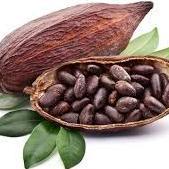 kakaobønne