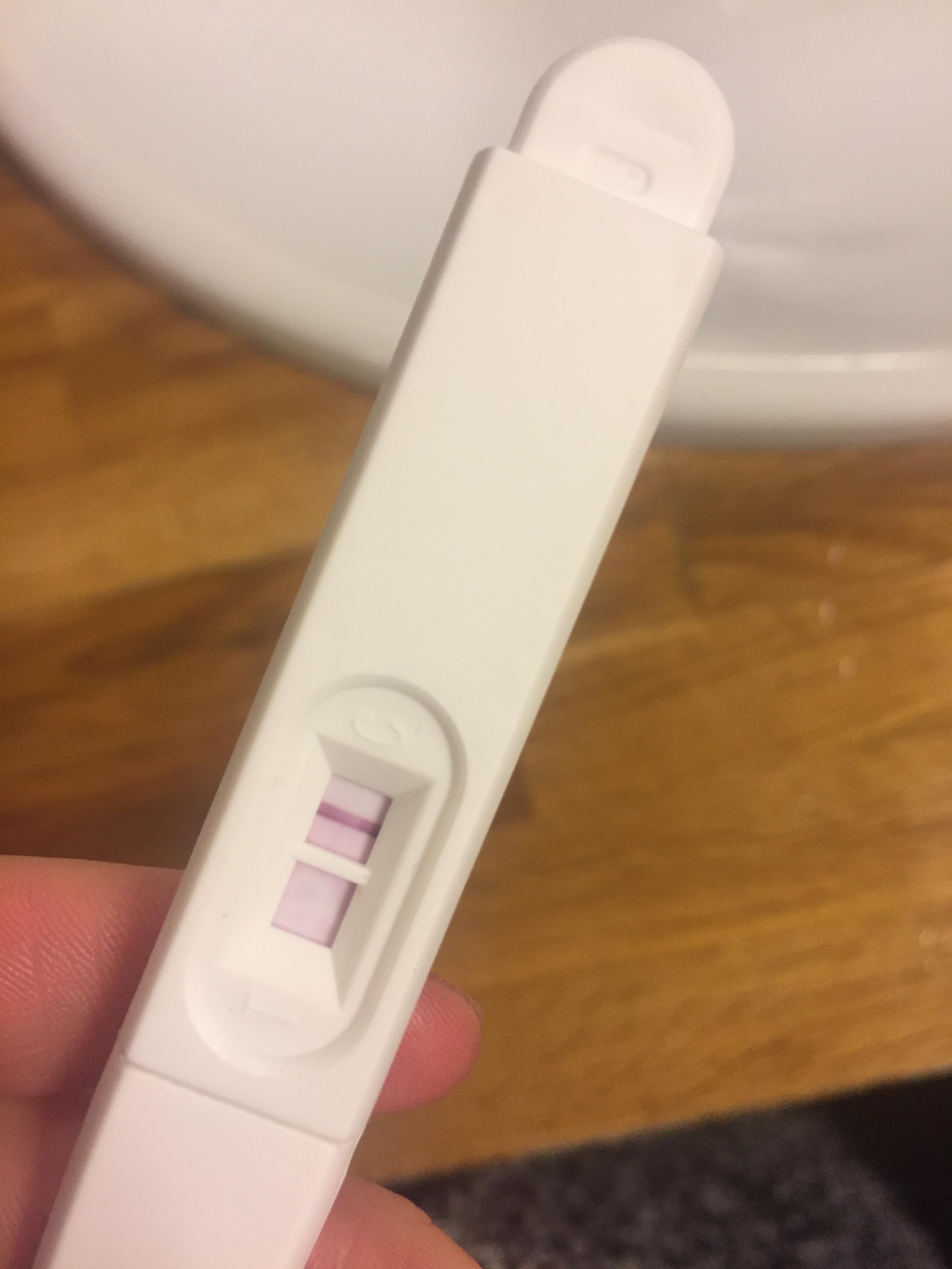 gravid mensen første mnd