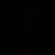 AnonymSjiraff
