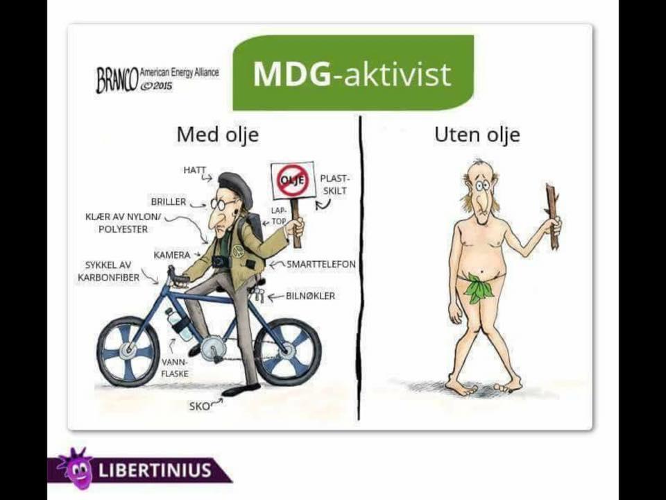 MDG.jpg