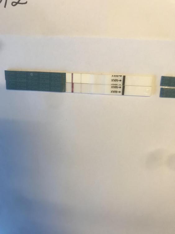FA55CB24-89D3-4BBE-AE70-3CCB0988A8F7.thumb.jpeg.350a1debd7e226ee00235b60cc2735ee.jpeg