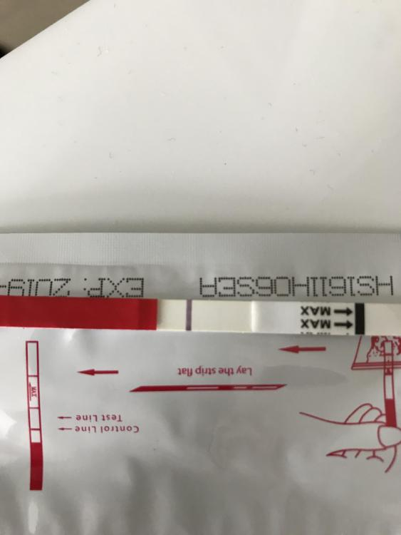 E858A293-95E4-4D07-B4AF-0F1BB3ADFA32.jpeg