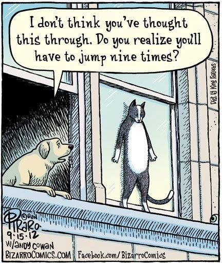 Funny-cartoon-Suicide-cat.jpg.e132dad1e8eb443ce399f5b8ac5c2119.jpg