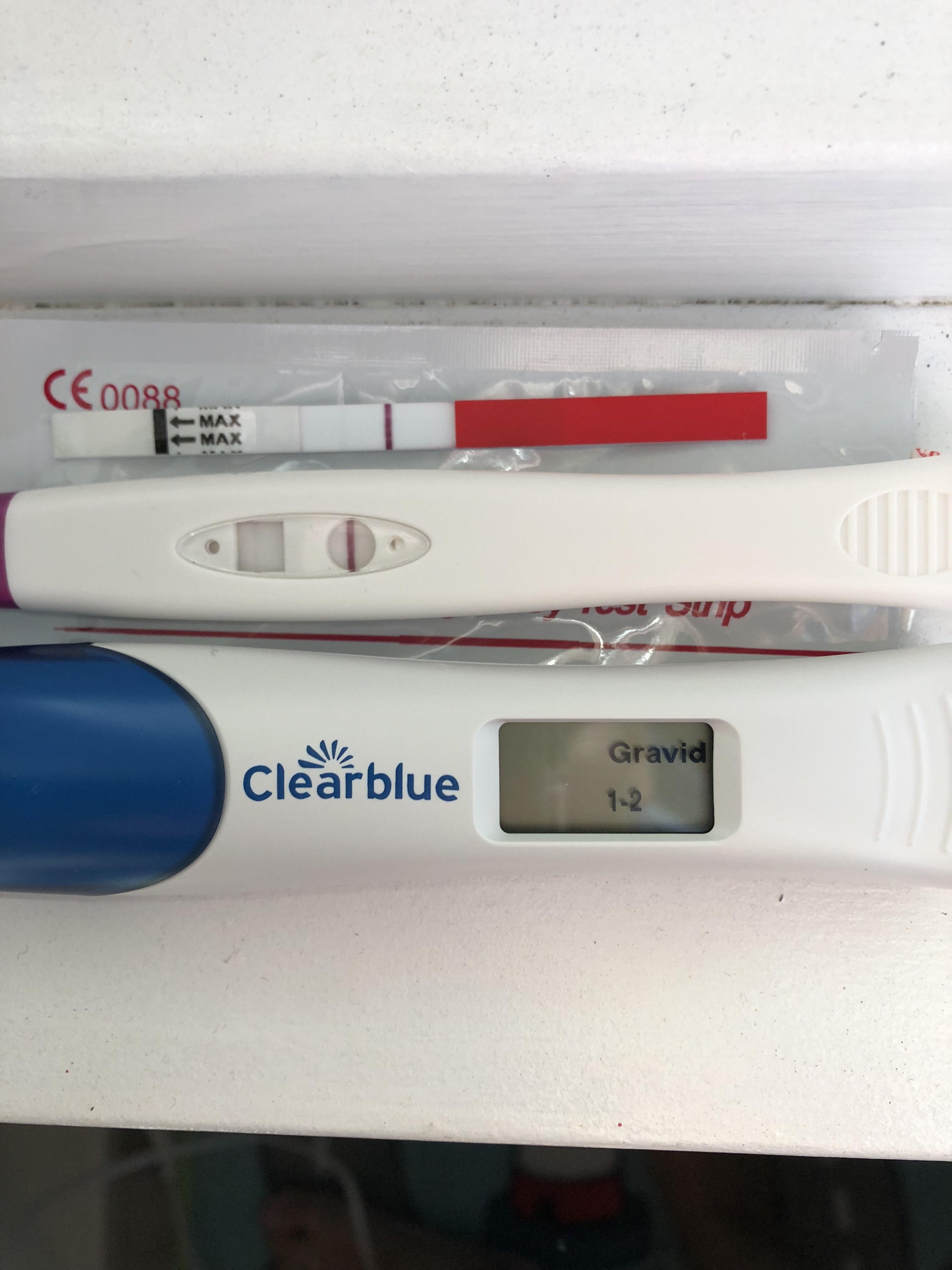 Svak graviditetstest Gravid