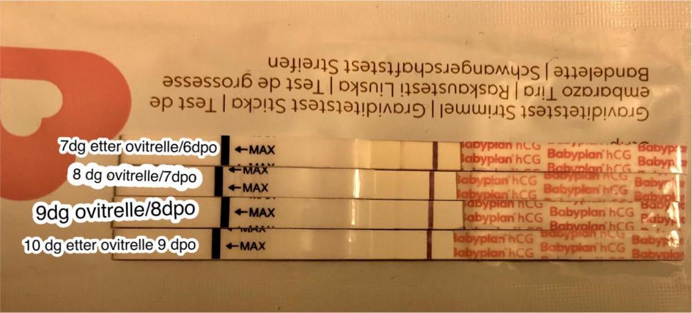D3E92E74-0375-46A6-99AA-F4034ACE9718.jpeg