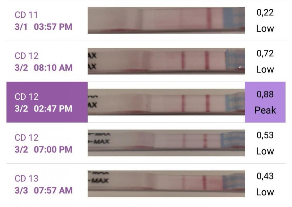 Screenshot_20200303_090230.jpg