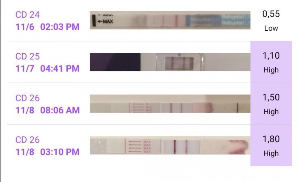 Screenshot_20201108_151106.jpg